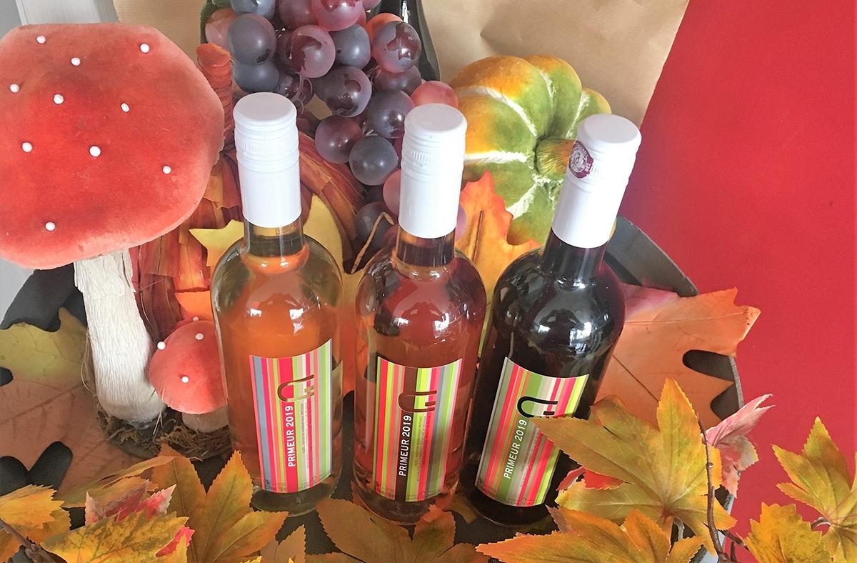 cavedegruissan_viticulteurs